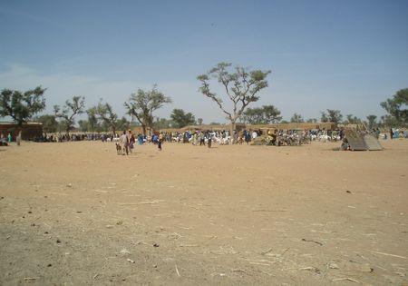 FATOMA marché aux ovins Mali