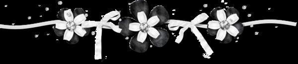 Fleurs blanches et noires