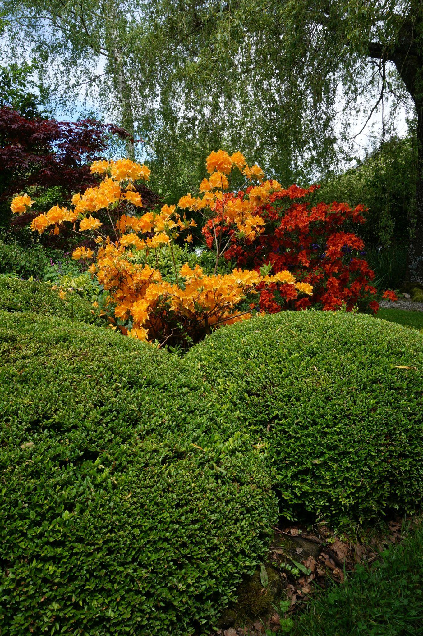 Corr ze tourisme for O jardins d eglantine