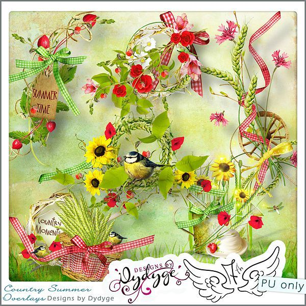preview_countrysummer_overlays_dydyge