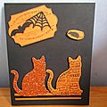 Carte chat paillettes