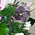 Des fleurs chez greenye (world) # 2