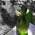 Windows-Live-Writer/jardin-charme_12604/DSCN0674
