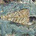 Miquel barceló (né en 1957) sardine ouverte