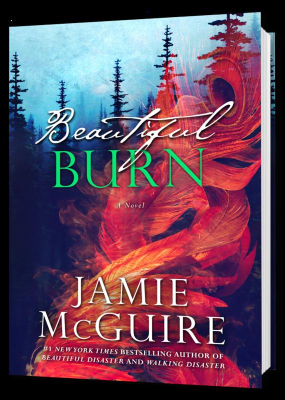 Book 3D Beautiful Burn