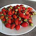 Sorbet fraises maison