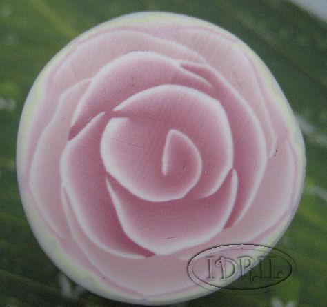 ROSE 2 IDRIL