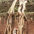 thailand chang mai cambodge kohchang 456