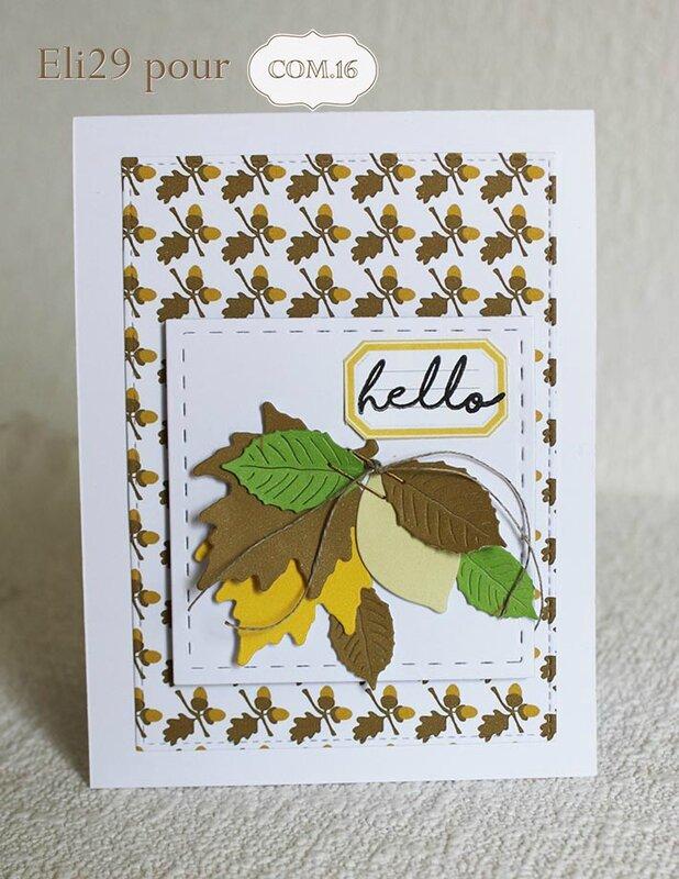 eli29_com16_carte-_automne_glands