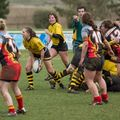 66IMG_0362T