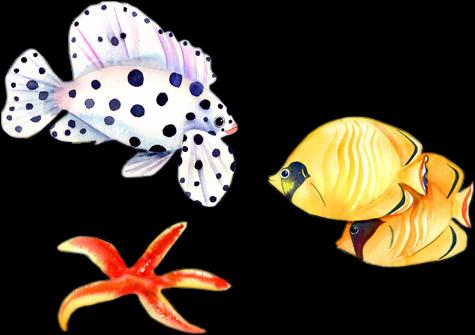 tube poissons 15