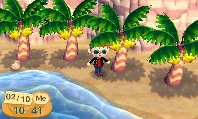 ou planter noix de coco animal crossing