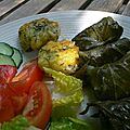Dolmas avec des feuilles de vigne et des fleurs de courgette