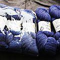 Plucky knitter
