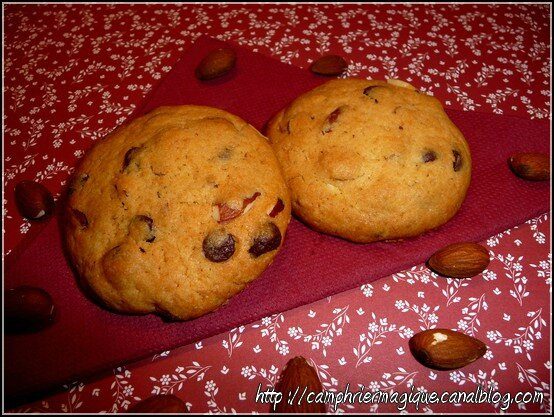 cookie choco-amandes