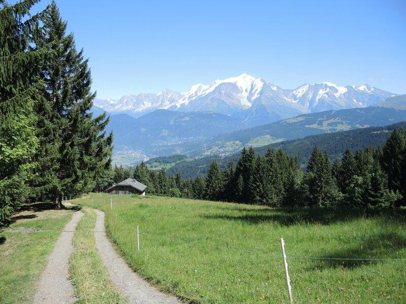 Cordon, randonnée belvédère, sentier et Mont Blanc(74)