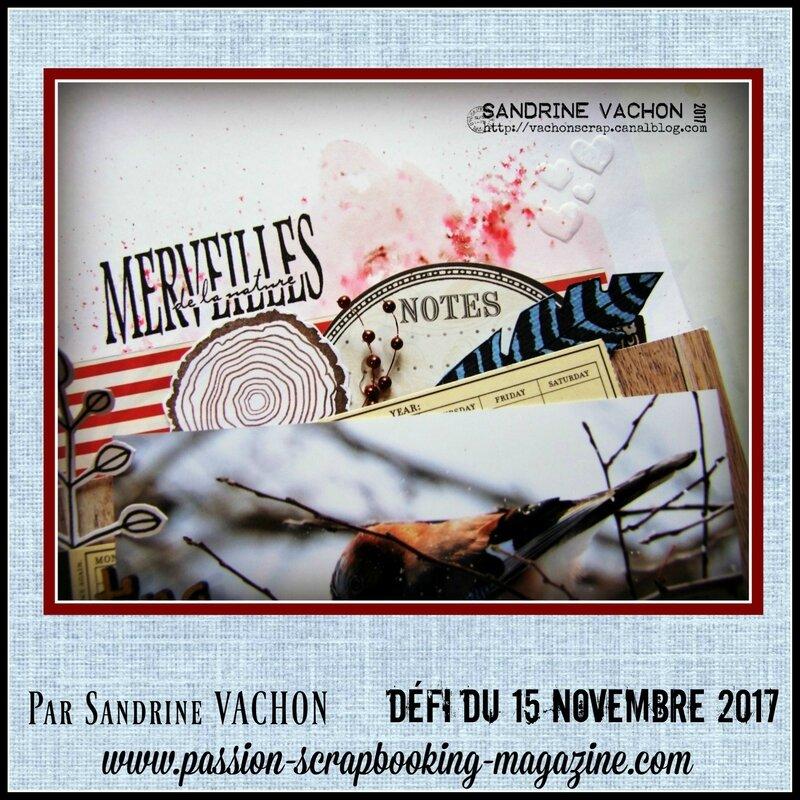 Sandrine VACHON 15 nov défi PS (4)