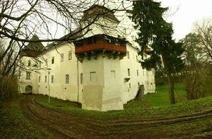 irinabrancovenesti_castle,_mures_county (2)