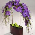 Orchidées vanda sur vase grenat forme ovale