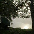 brume sur l'étang_3