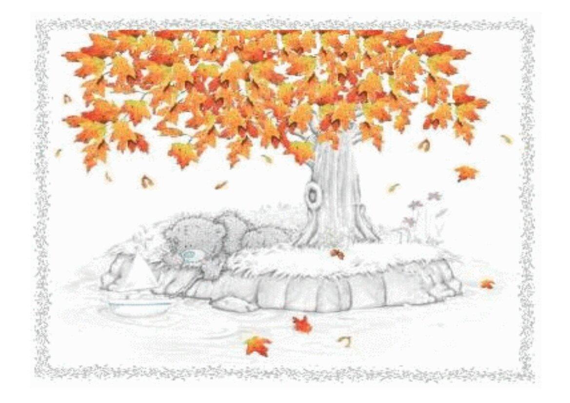 Petite rencontre d'automne