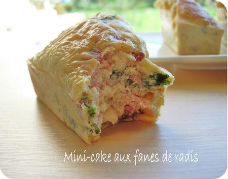 mini_cake_aux_fanes_de_radis__scrap2_