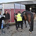 La Balade du Jambon - Balade à cheval dans le mortainais (12)