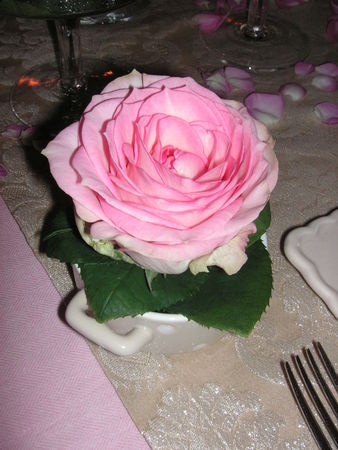 table_rose_f_te_des_m_res_007