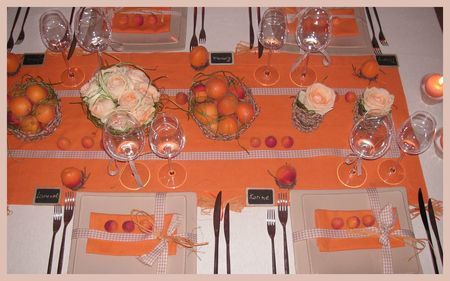 2009_07_07_table_abricots13