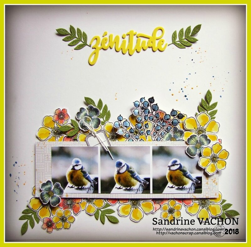 Sandrine VACHON défi 12-2018 mars PS (1)