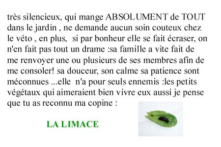 Concour_limace_Denyse