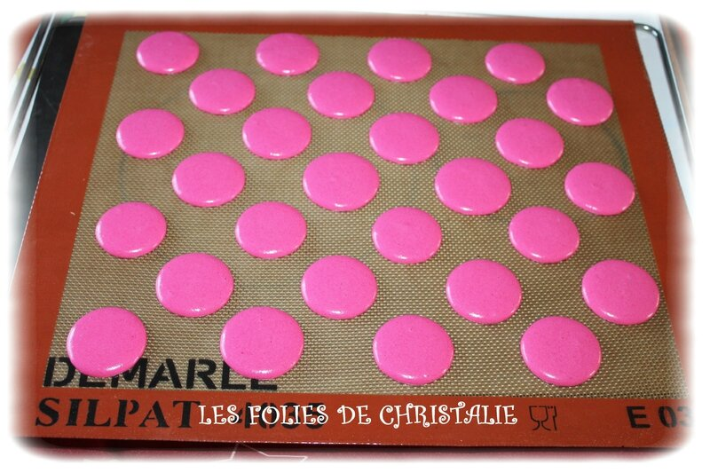 Macarons poudre 8