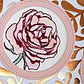 Rose de jardin...