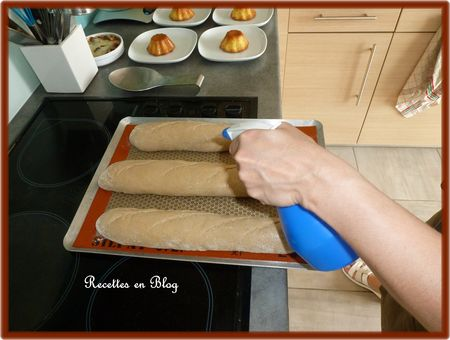 baguettes_tradition_sur_poolish5