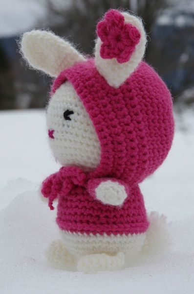 Bunny in the Snow (11)