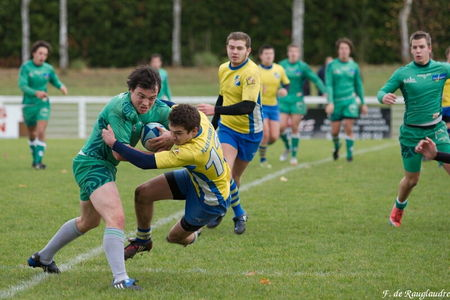 29IMG_1164T