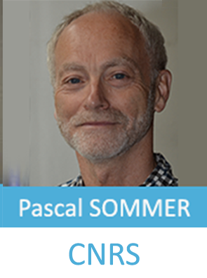 Pascal-Sommer