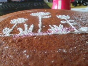 Gâteau fondant aux amandes28