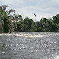 Ivindo l'affluant du fleuve Ogooué