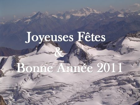 bonne_ann_e2011