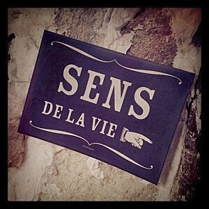 sens-de-la-vie