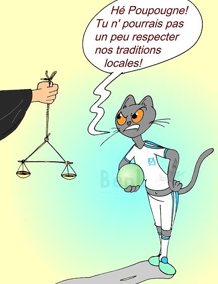 2014 (19) sport