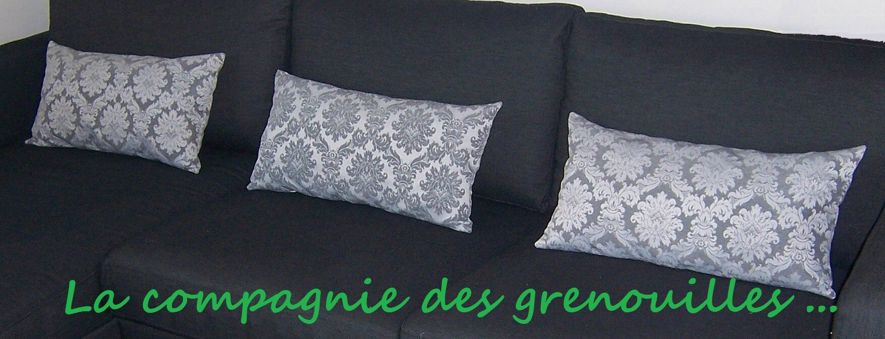 coussins d 39 ameublement la compagnie des grenouilles. Black Bedroom Furniture Sets. Home Design Ideas