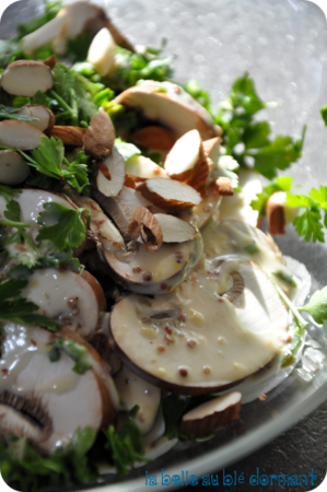 Salade champi2