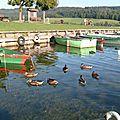 Barques de pêche lac Saint-Point Doubs