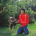 michael-and-his-animals-michael-jackson-31107602-2560-2437