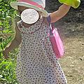 Le temps des cerises! primerose de citronille