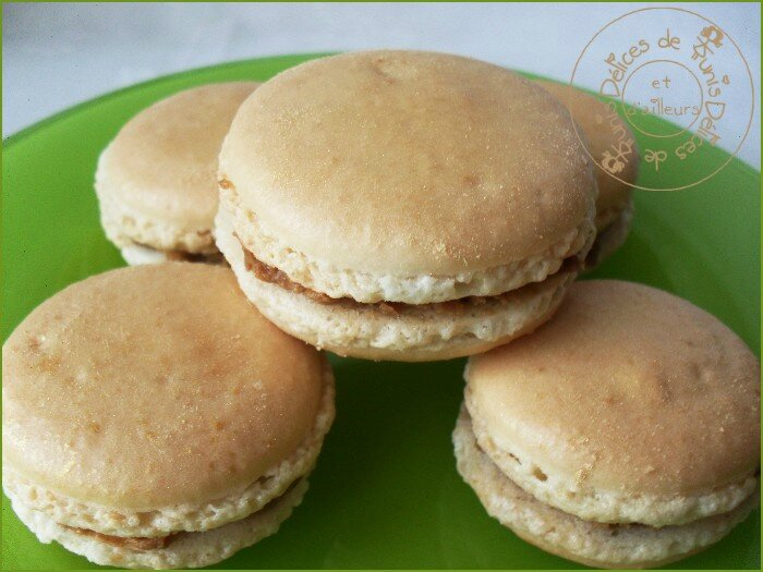macarons speculoos 2