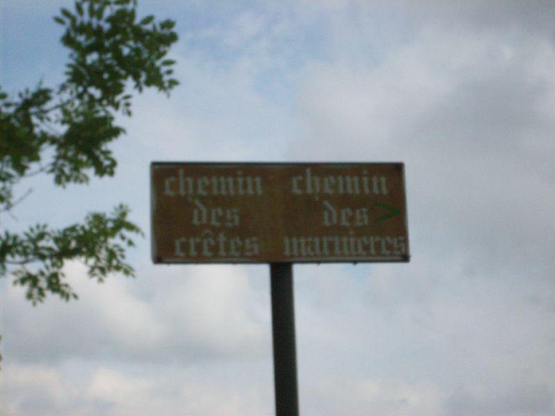 Lannemezan, la boucle du Culassou  Randonnées dans les  ~ Bois Lannemezan
