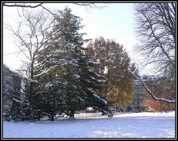 Le jardin anglais gen ve en suisse sous la neige for Jardin anglais geneve programme